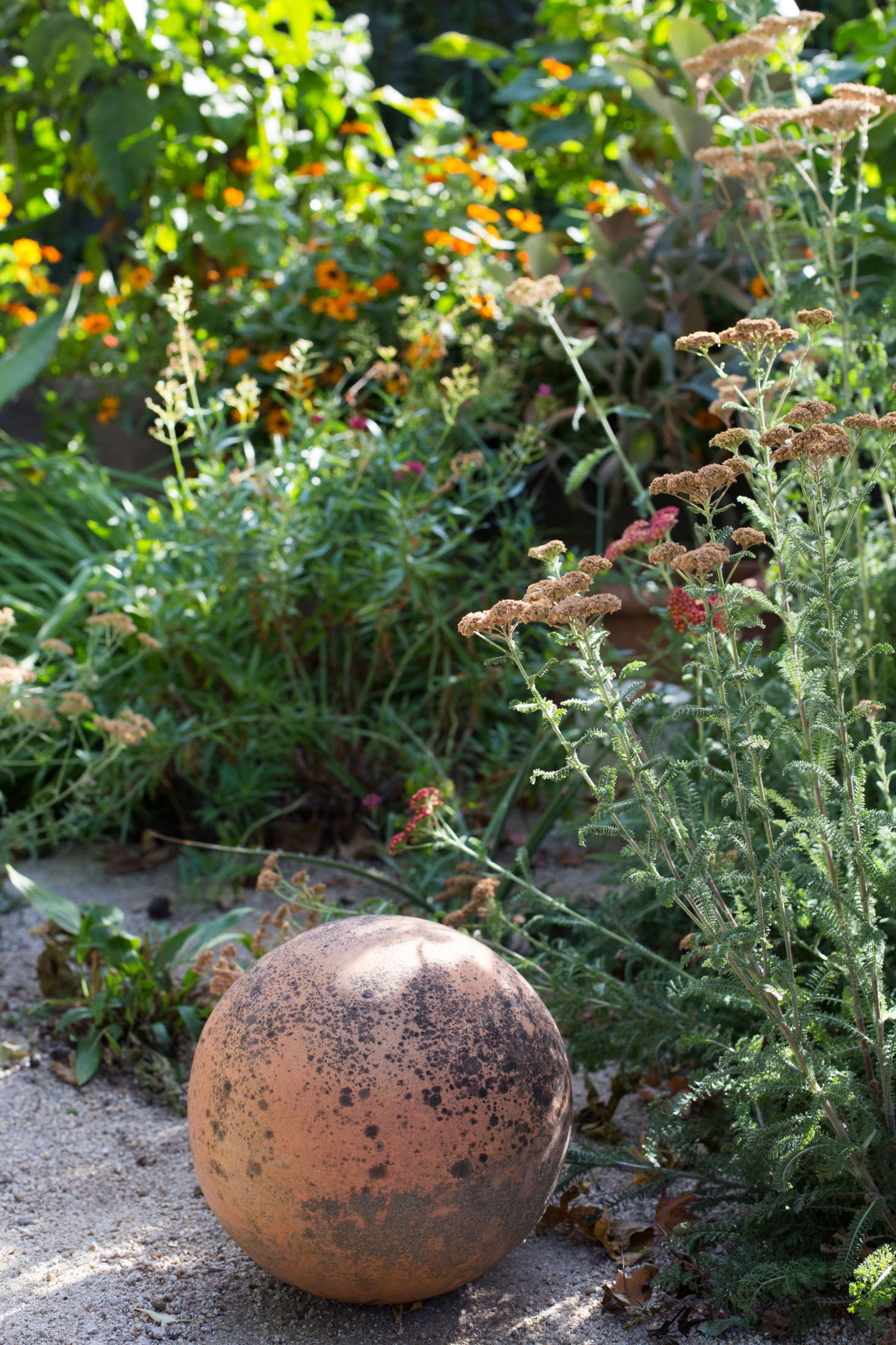 Low-water perennials such as yarrow mingle with succulents on the edge of the edible garden.