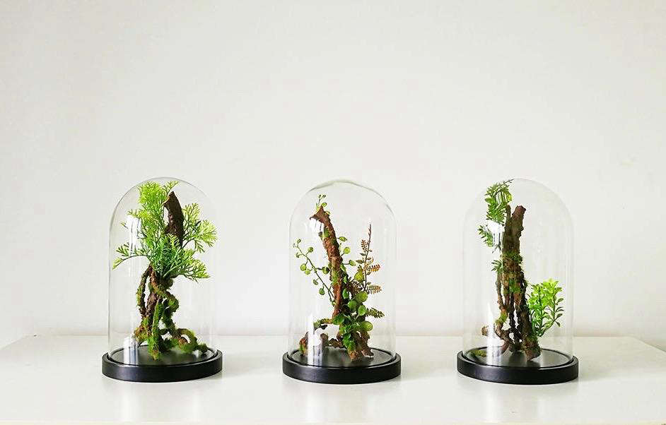 The New Terrarium 6 Top Trends For 2018 Gardenista
