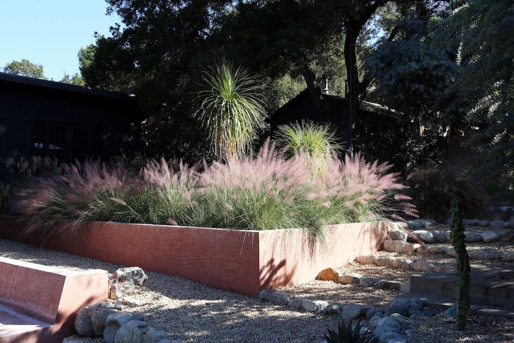 棕榈棕榈,是棕榈墙,代表威尼斯