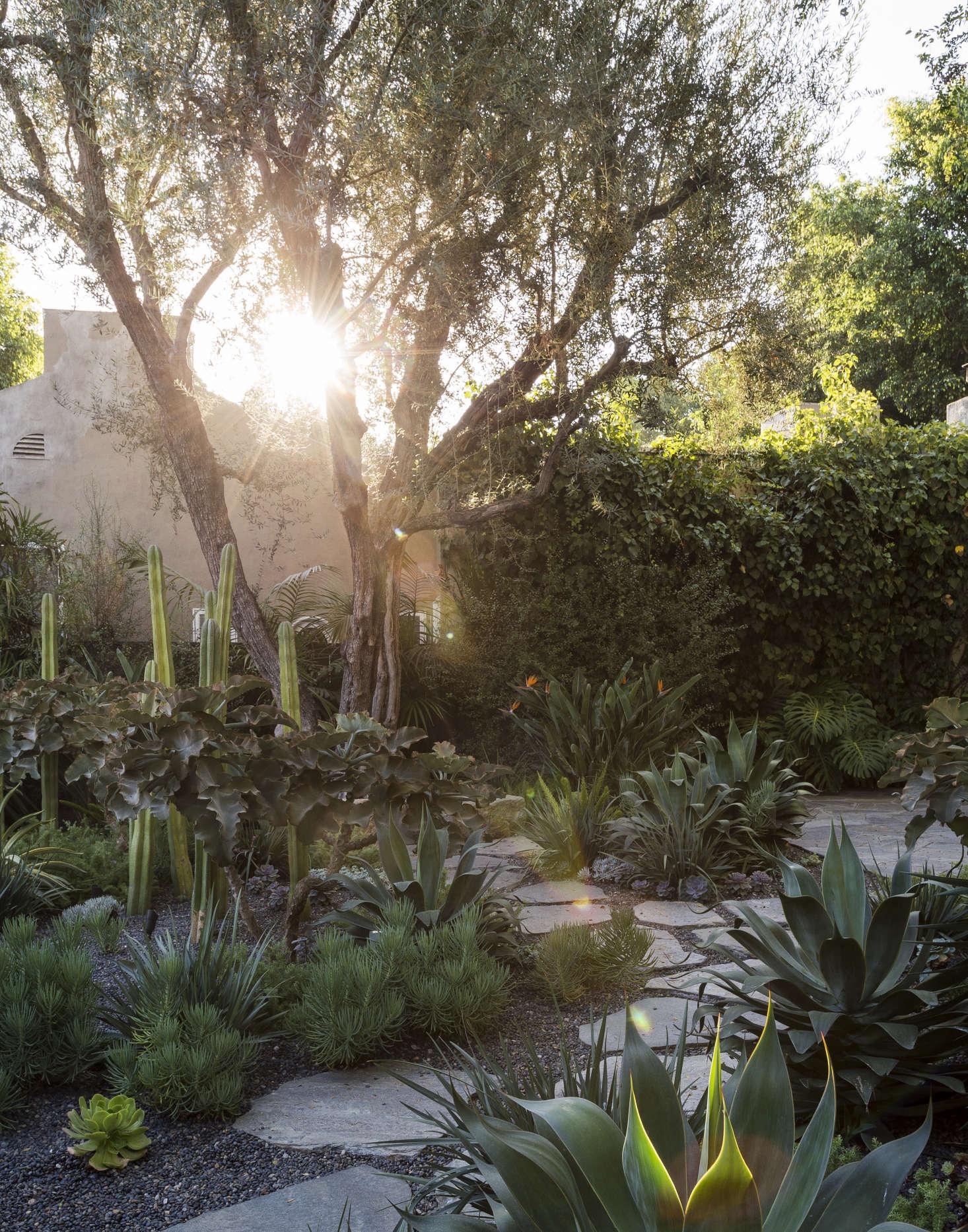Landscape Design: 10 Tips for a Fire-Safe Garden - Gardenista