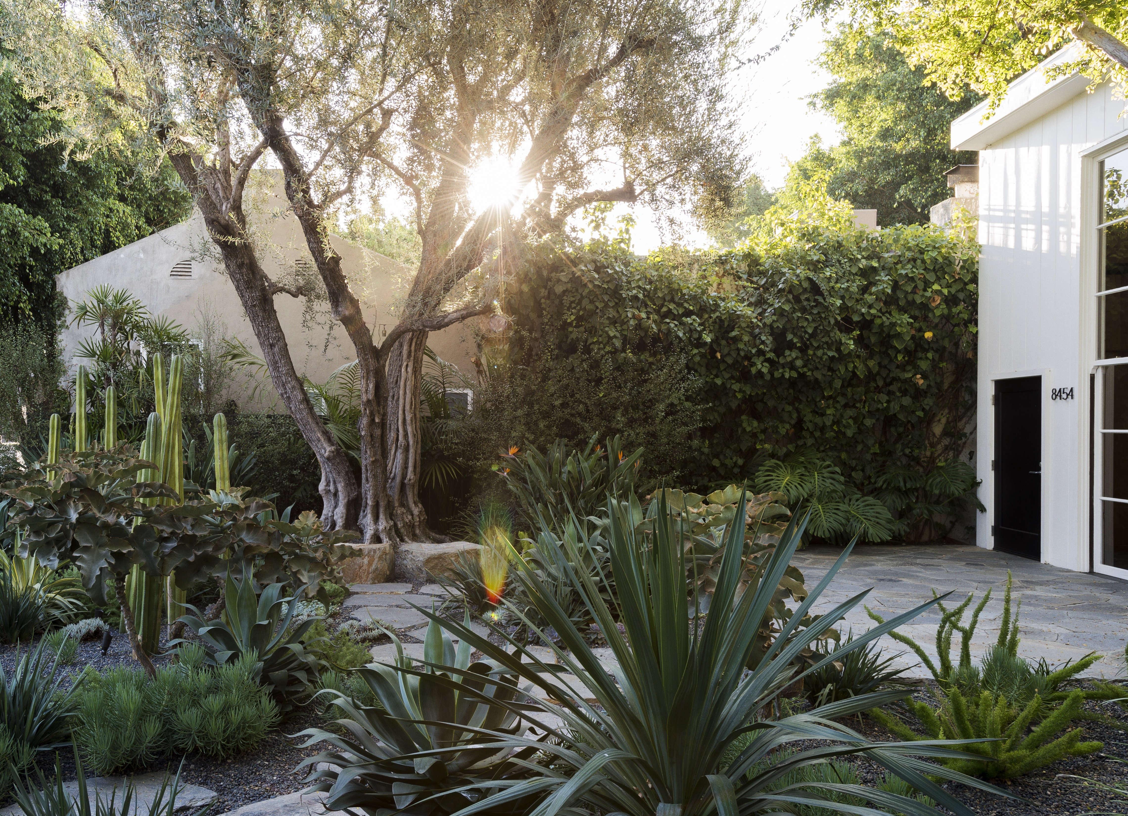 garden design 101 gardenista