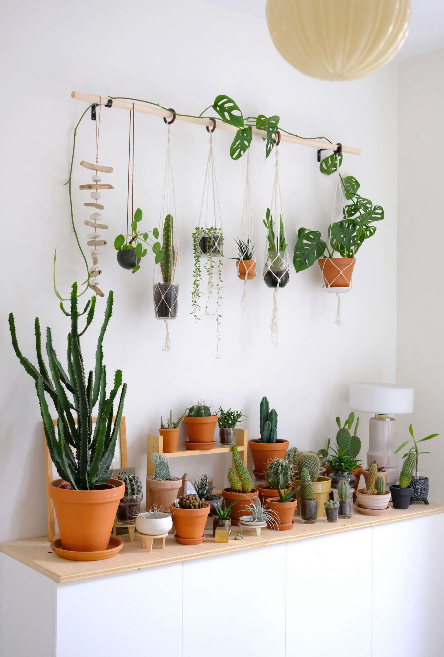 diy hanging plant wall with macrame planters. Black Bedroom Furniture Sets. Home Design Ideas