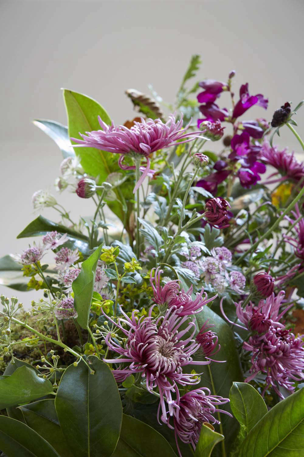 A late autumn bunch that includes Chrysanthemum &#8