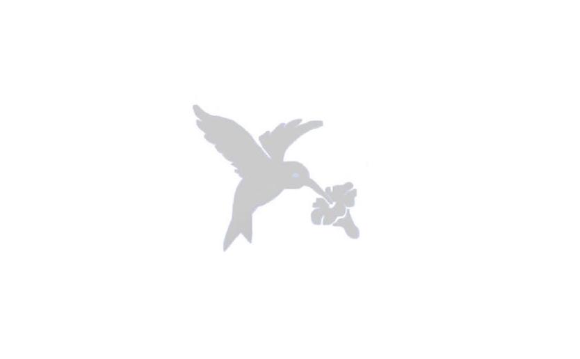 Icons For Prism Birder Icons Wwwiconswizcom - Window alert hummingbird decals amazon