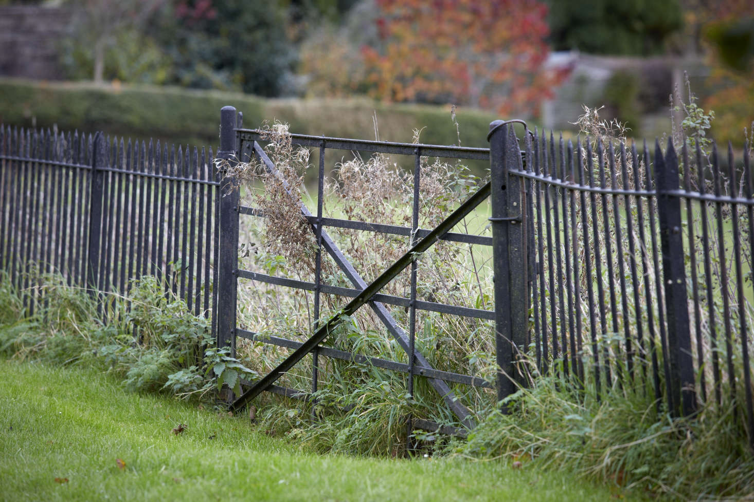 Anatomy Style Wire Fence - WIRE Center •