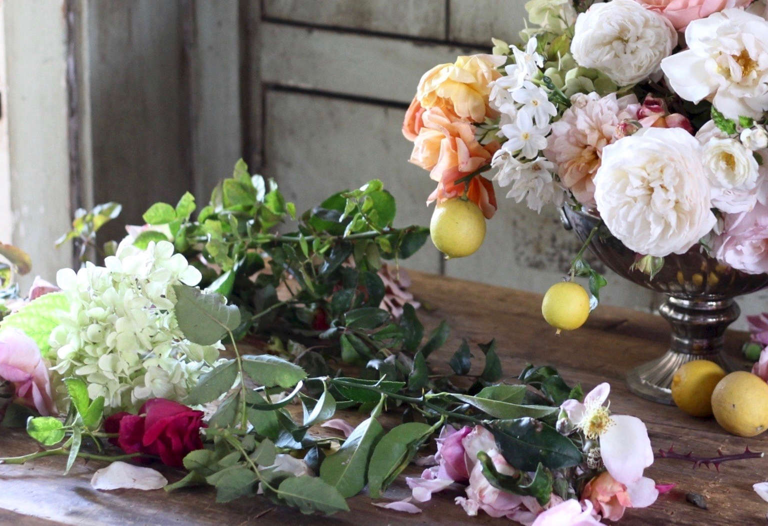 Expert Advice 8 Best Garden Roses For Cutting From A Boutique