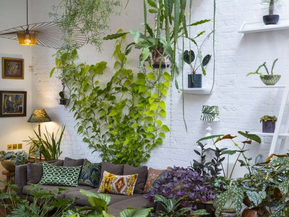 Plant Doctor: How to Save a Dying Houseplant - Gardenista on sword house plant, avocado house plant, marijuana house plant, steel house plant, banana house plant, jade house plant, leaf house plant, lazarus house plant, ant house plant, lemon house plant, dolphin house plant,