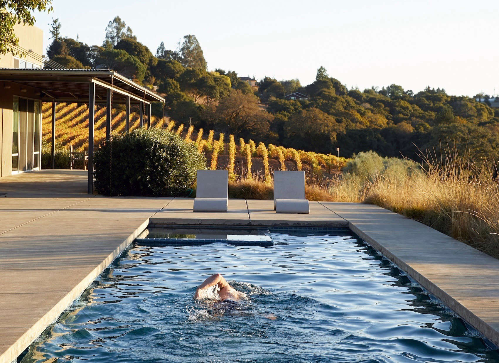 Swimming Pool of the Week: A Lap Pool Above the Vines at Baker Lane ...