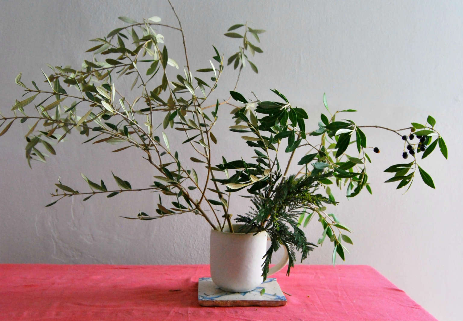 Olive branches rethinking an underappreciated symbol of peace olive trees are common in mediterranean climates where olives and their oil are a mainstay of the cuisine but the leaves and branches have also been used buycottarizona Choice Image