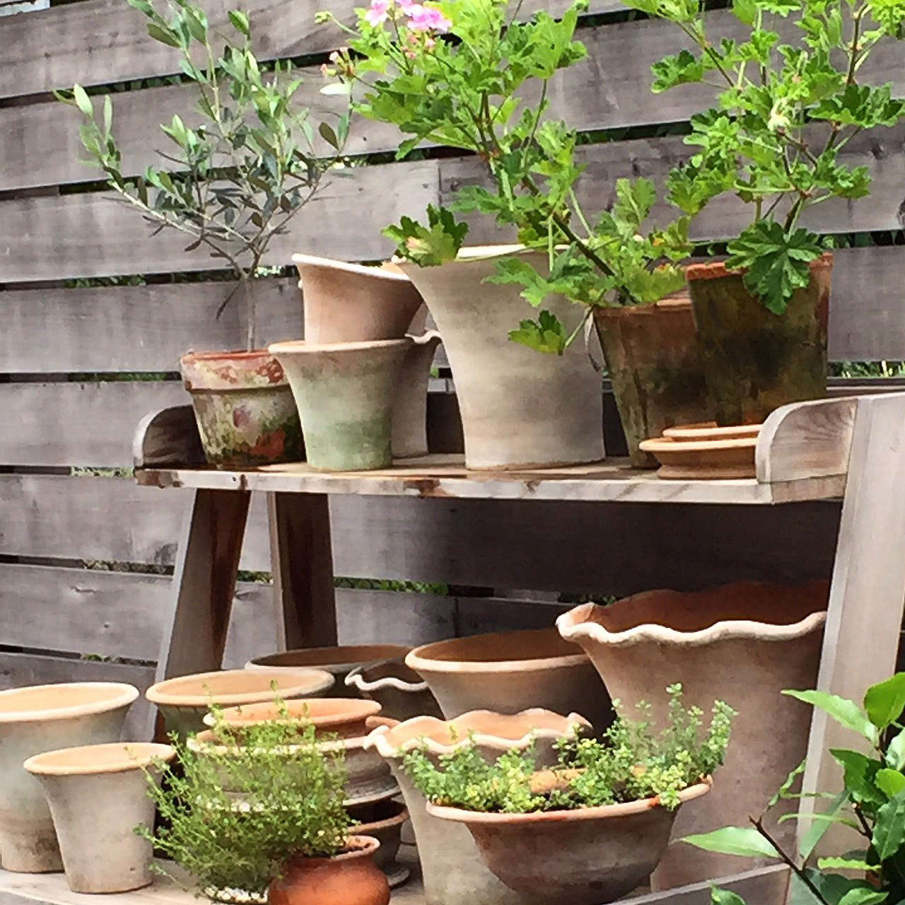 10 Ideas To Organize The Perfect Potting Shed Gardenista