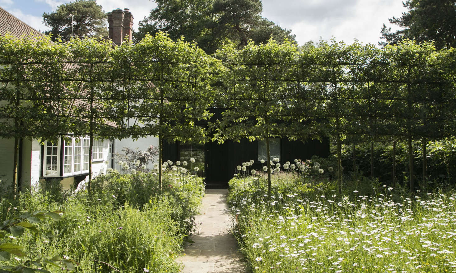 欢迎一根苹果树,苹果的微笑,熟悉的房间。比利时的比利时,是从荷兰的
