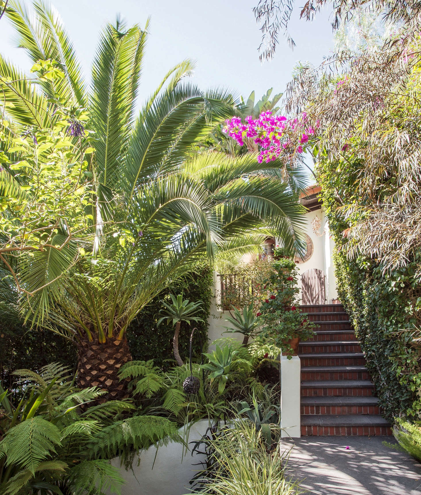 See More Of This Palm Tree And The Los Angeles Garden It Graces In Our Book