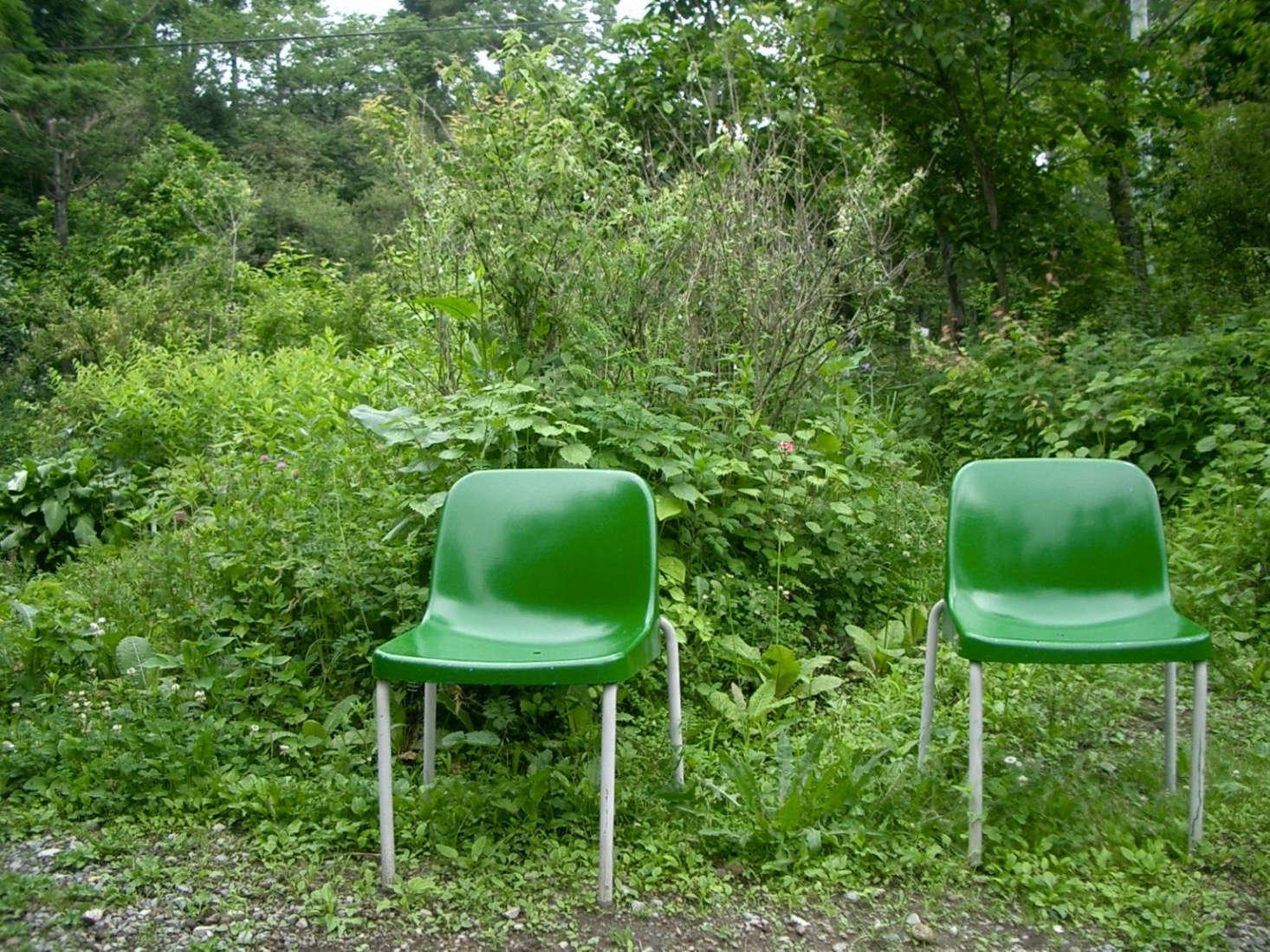 在北境中心,住在乡村中心,住在阳光下,一片绿色的花园,将在日本的一间校园里漫步。来自卡维纳的照片。