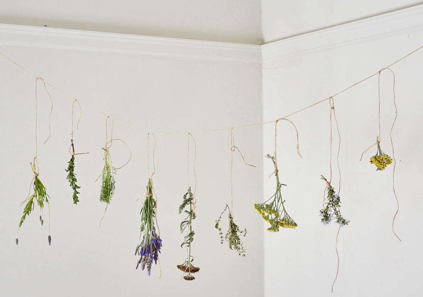 We got creative and made a bunch of bundles with herbs–including flowering Yarrow and Thyme.