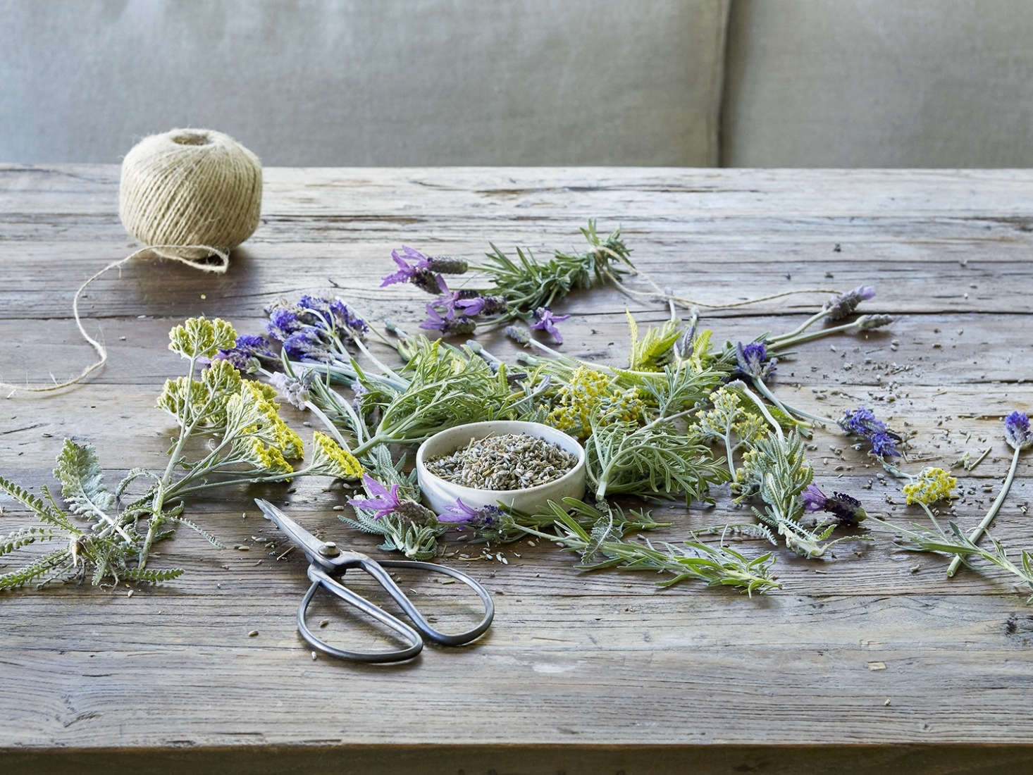 Loves me, loves me not, (clearly) loves me. Read more about flowering lavender in Everything You Need to Know About Lavender (Plus 5 Kinds to Grow).