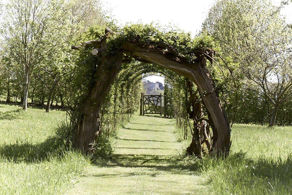 一条苹果树和树枝上的树枝上的树枝。参观花园花园花园花园花园里的花园:一种传统的乡村风格。来自维特纳·维斯顿的照片。