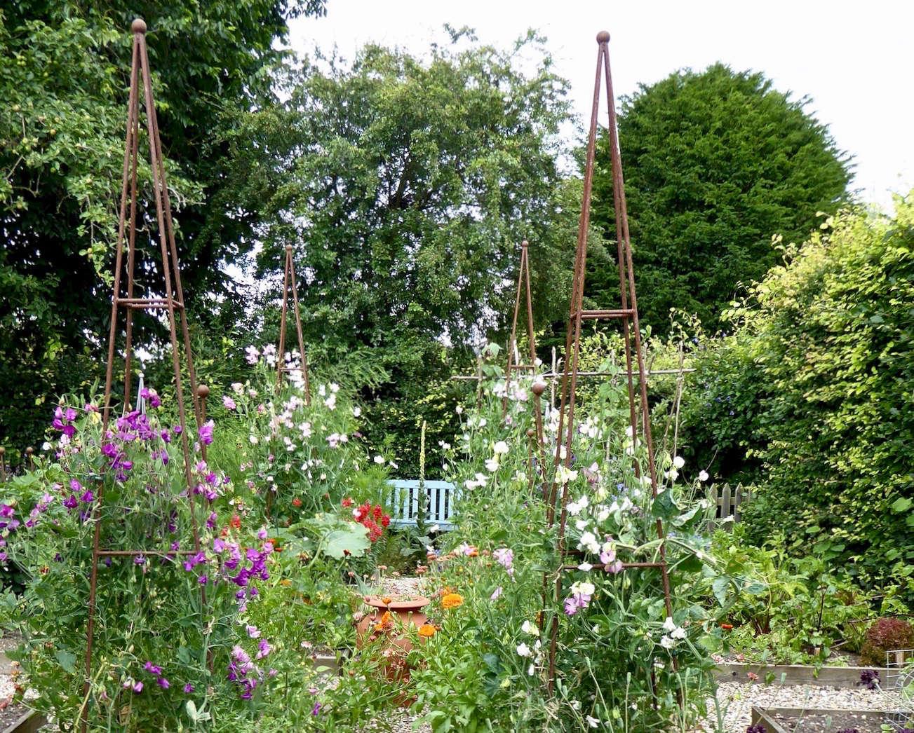 在花园里,花园里,还有一份新的花园,还有皇家俱乐部。根据DRIDD的照片。