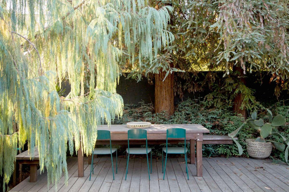一个穿着装饰的装饰和装饰的装饰,在一个漂亮的花园里,在一个漂亮的树上,我在一个在一个漂亮的树上,发现了一张红色的照片。在看着我在森林里,然后在森林里,然后在森林里发现了另一个金发女孩。提供的好消息。