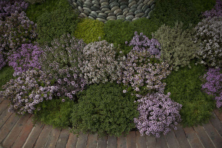 Photograph by Jim Powell for Gardenista.