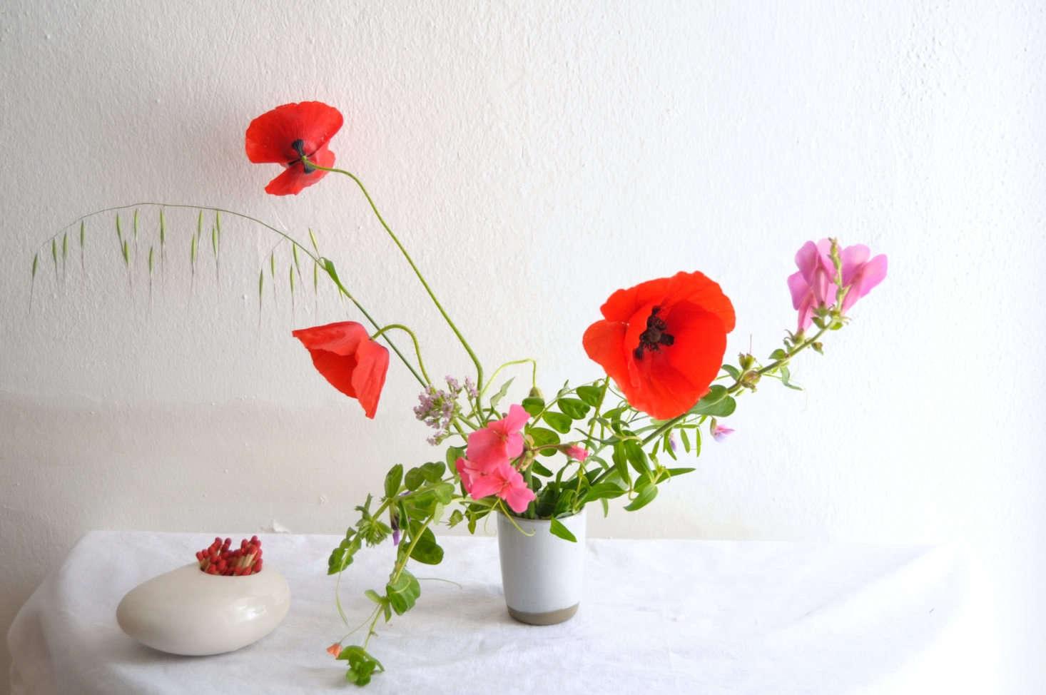 Rethinking Poppies How To Make A Fragile Flower Last Longer