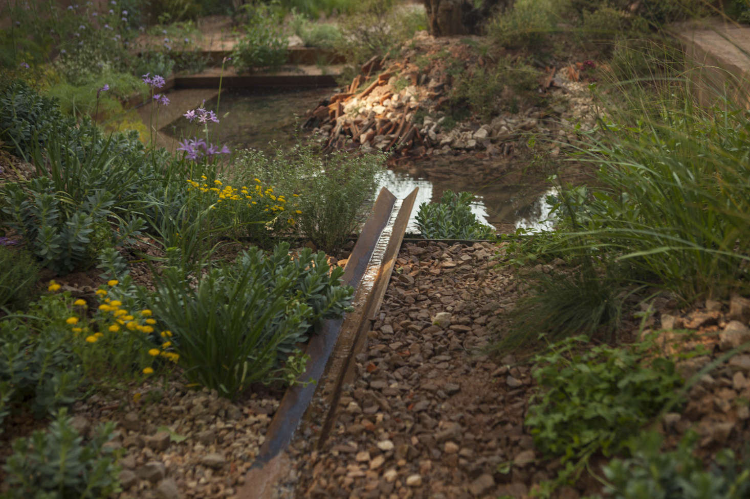 Chelsea Flower Show 2018: A Behind-the-Scenes Look at Designer Sarah ...