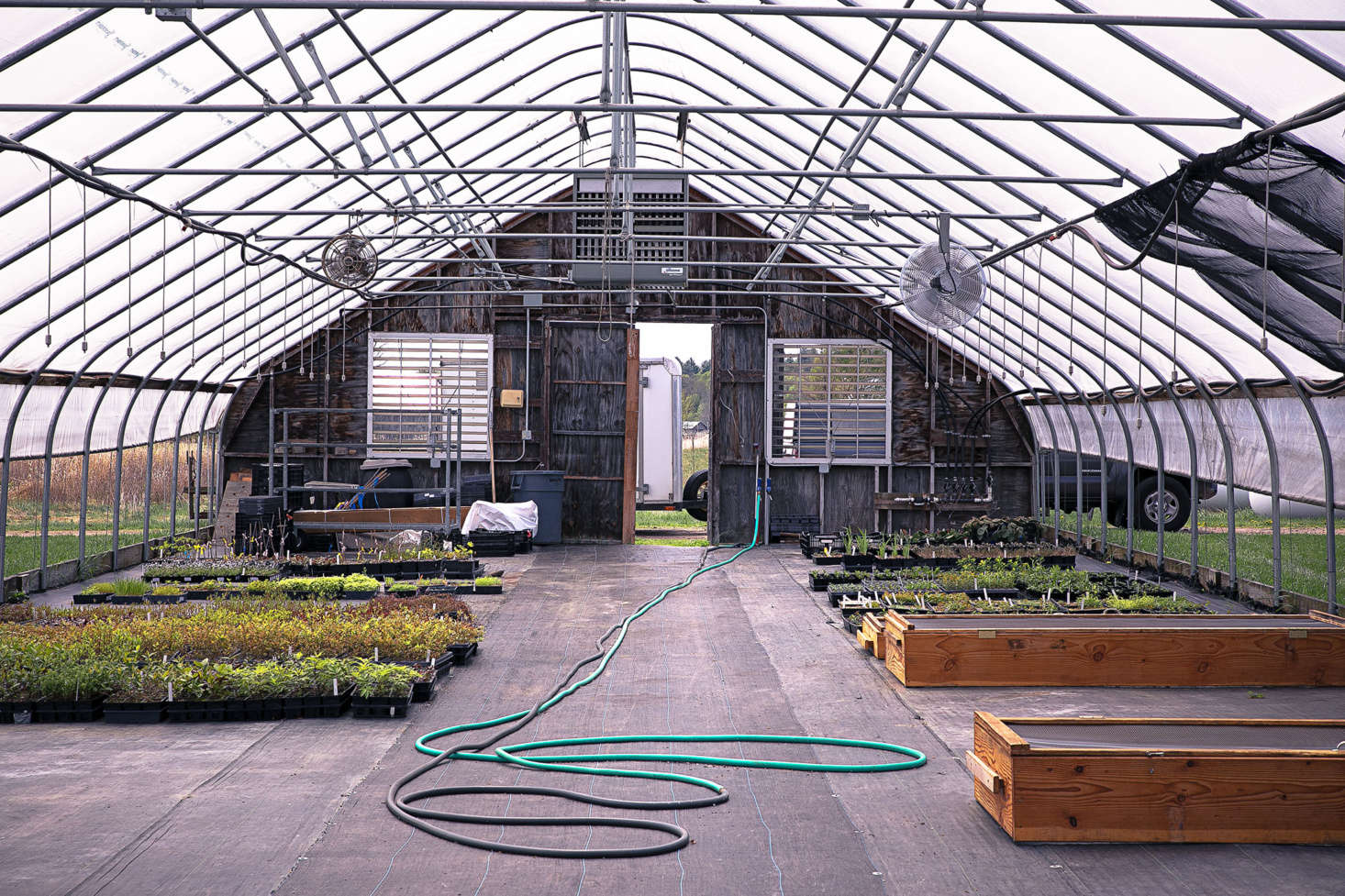 Because the New England climate and soil conditions range from loamy woodlands to sandy shores, growing conditions in each greenhouse are carefully tailored for each plant.