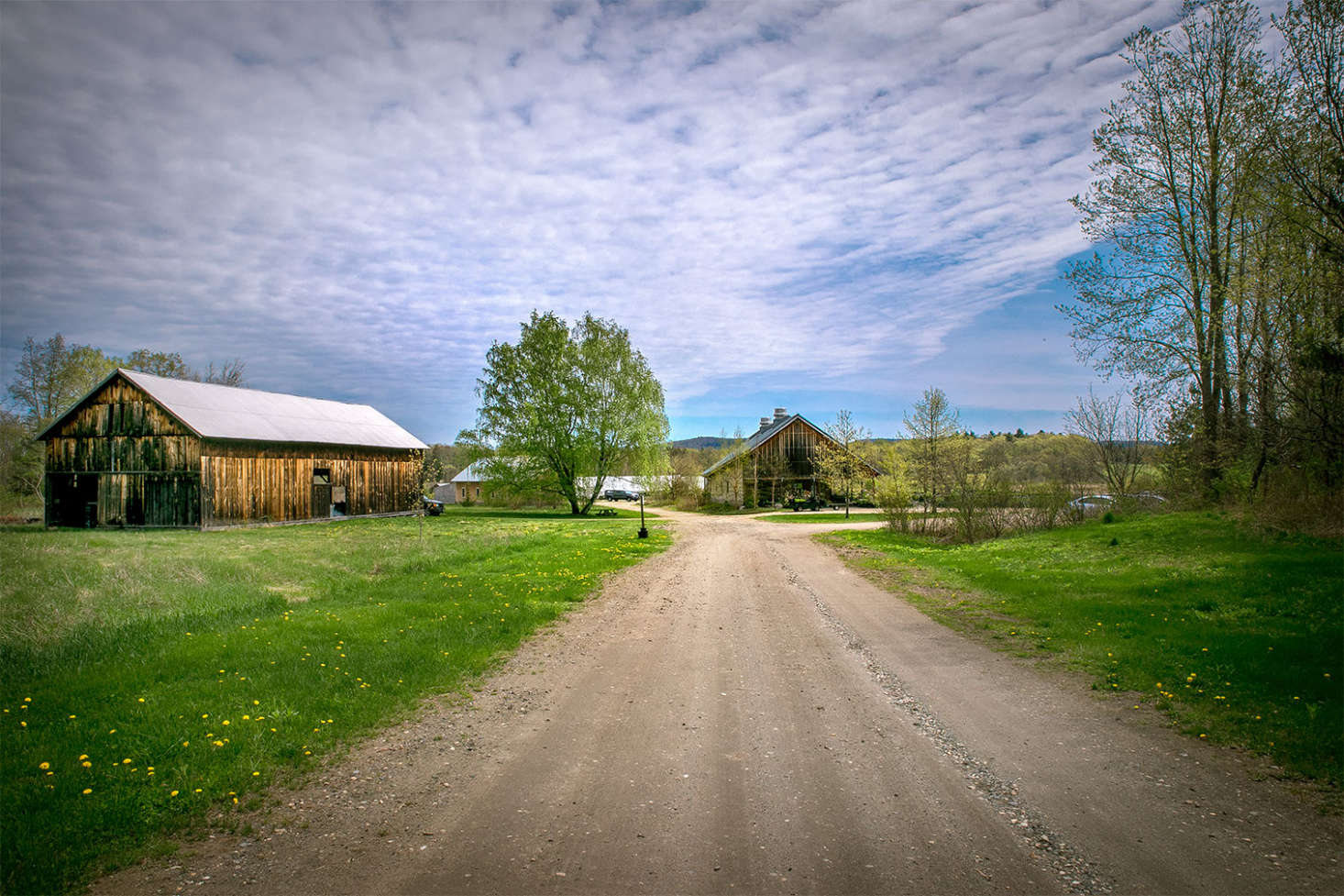 Located in Whately, Massachusetts, Nasami Farms is situated on 40 acres of bucolic farmland.