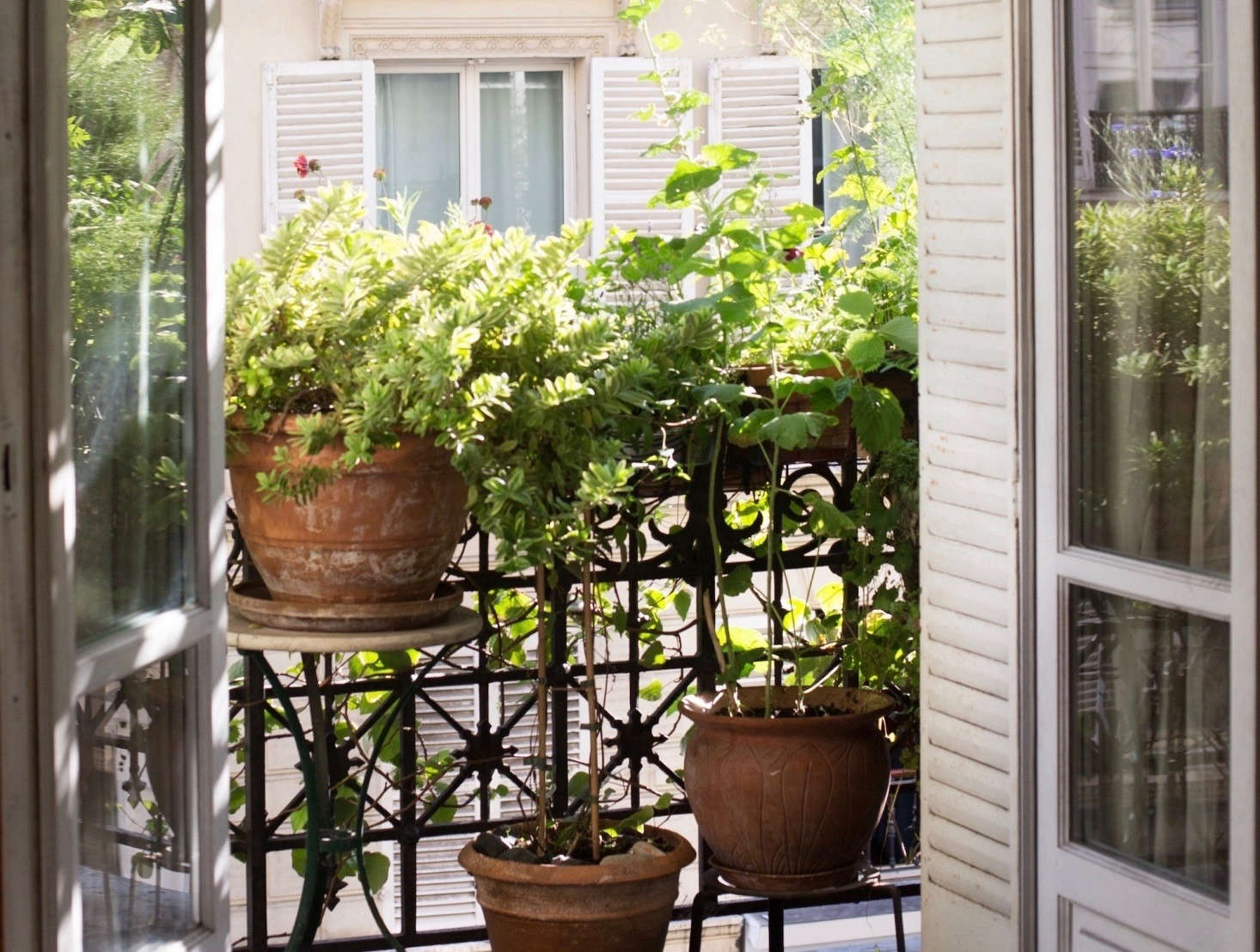 Perfect Parisian Balcony Gardens 7 Favorites From The