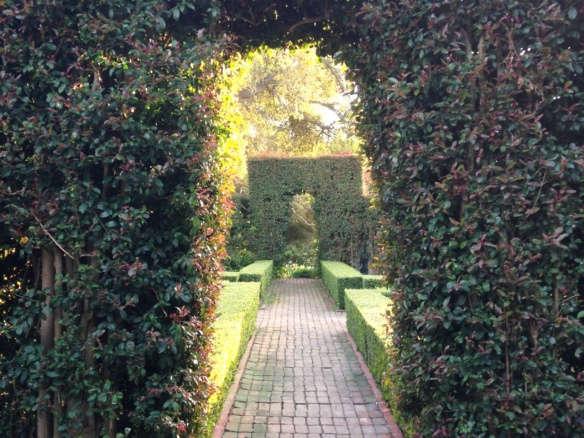 Gardening 101: New Zealand Flax - Gardenista