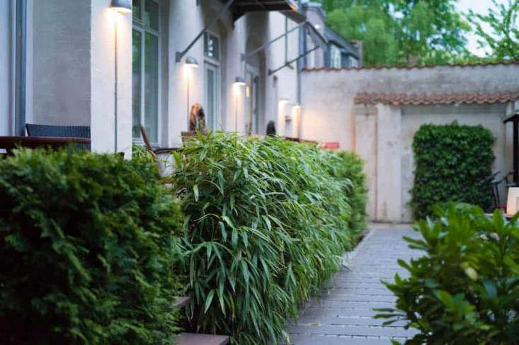 10 Garden Ideas To Steal From Denmark Gardenista