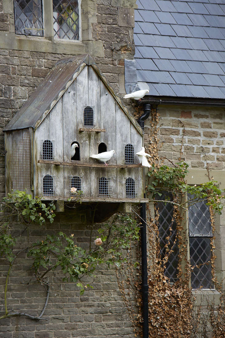Dovecotes Everything You Need To Know About The Ultimate