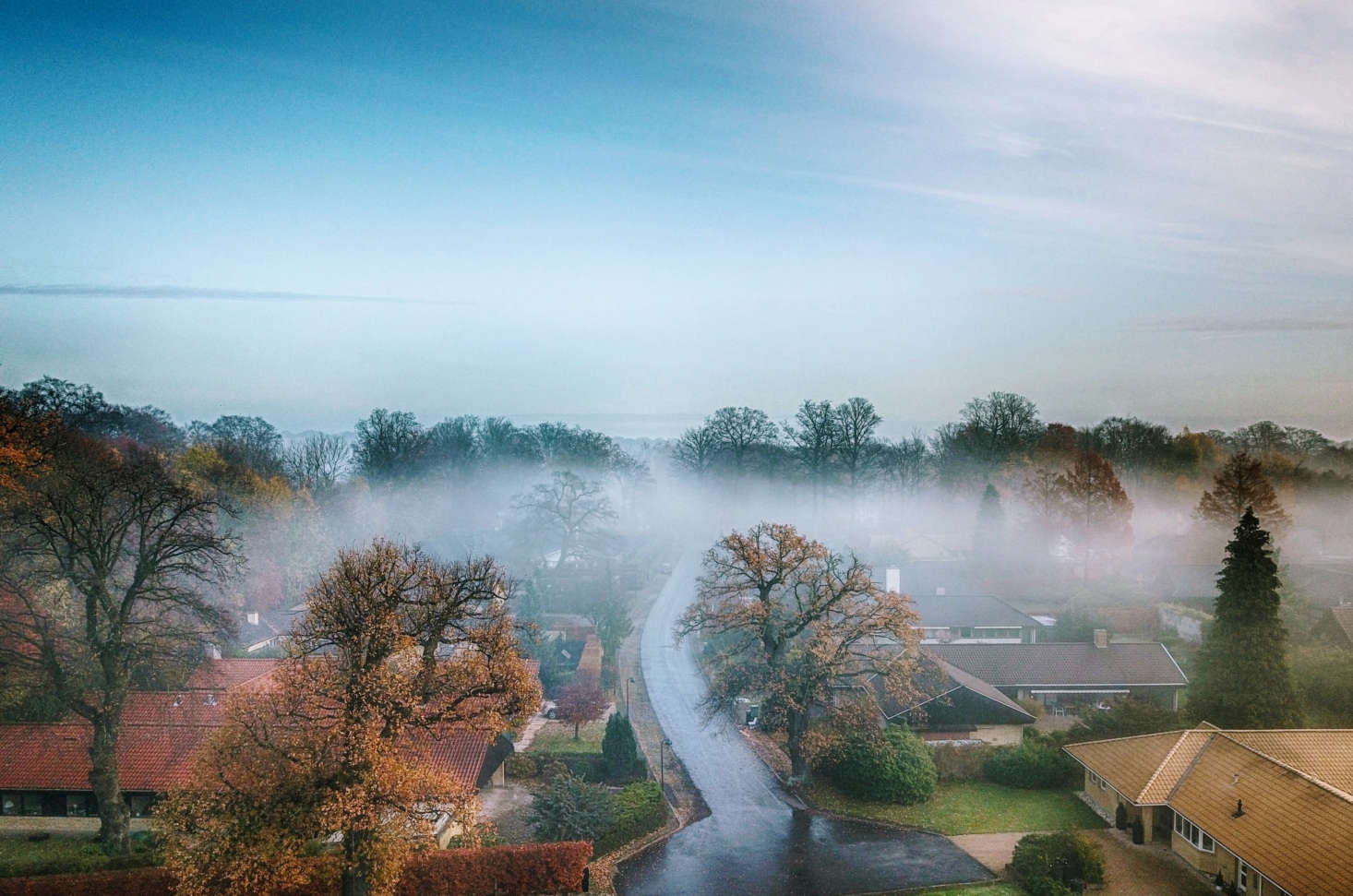 An aerial view of gardens in Ordrup, north of Copenhagen, near where garden designer G.N. Brandt lived. Photograph by Lars Plougmann via Flickr.