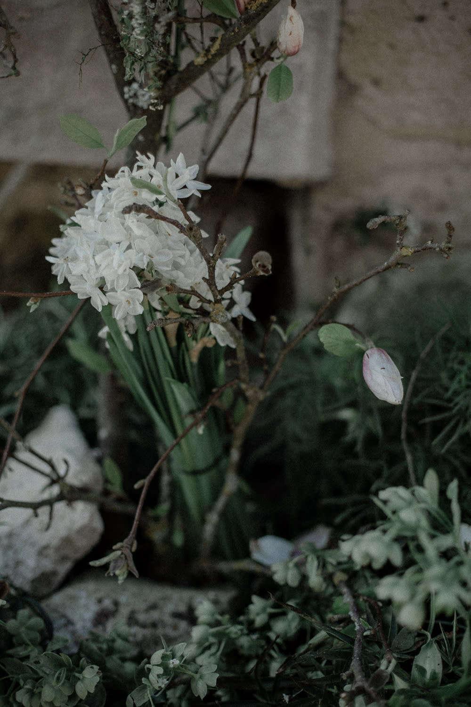 白羊绒,白羊绒,在旧的树枝上,直到从树枝上开始。