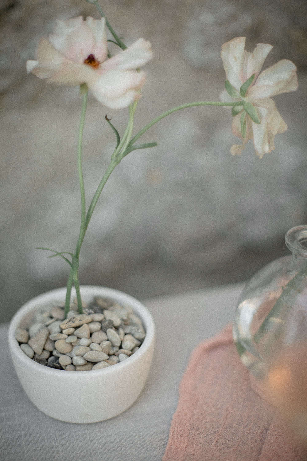Less is more: an arrangement with only two stems, plus small stones in the base.