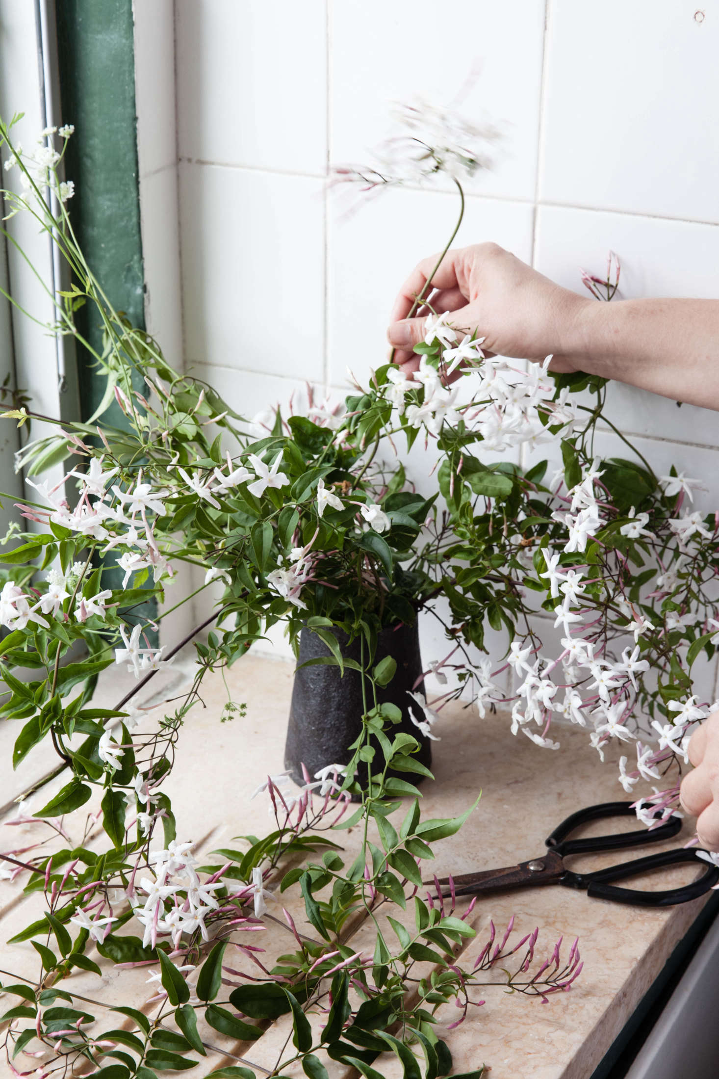 Rethinking Jasmine: The Perfect Vase for a Fragrant