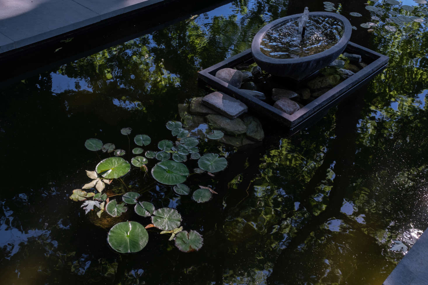 The shallow pool, with lily pads, is home to the couple's turtle, Moe. He winters in a glass tank in the houseuntil the water warms up enough for his reentry.