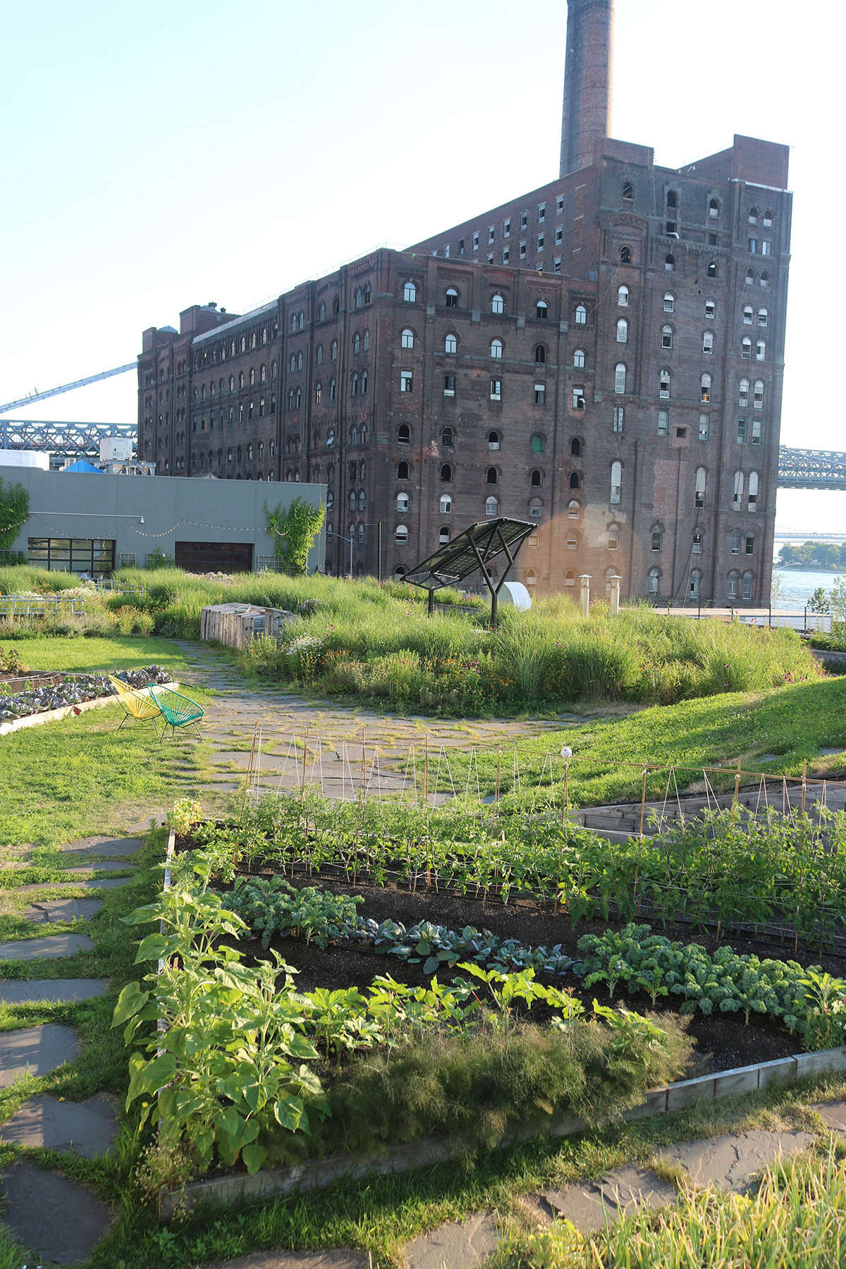 The vegetable garden at the northern end of the space is planted in raised beds, with a depth of about 12 inches.