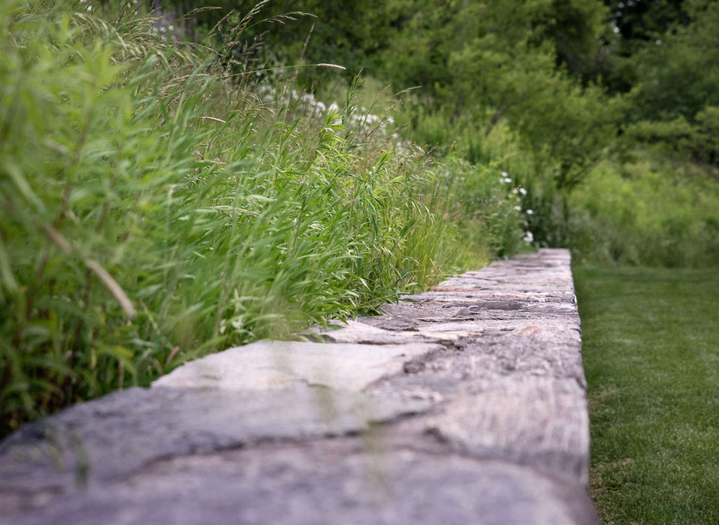 Planted along the fieldstone walls, grasses create a sense of movement and enhance the agrarian feel of the site.