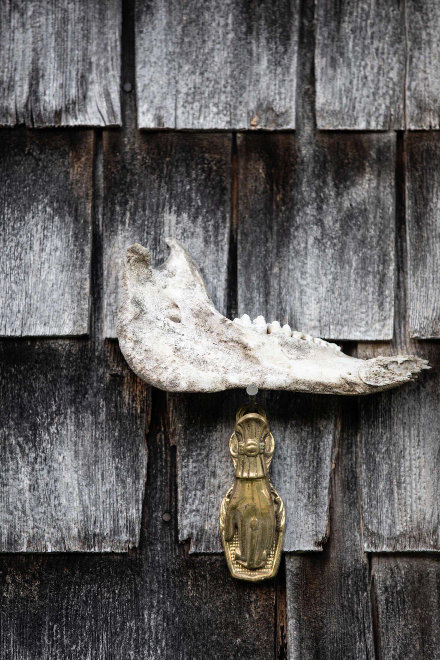 在一个叫雪客的前门来的人。在人类身体里,人类身体中的生物和骨骼——他们在分离的东西,这些东西都是……