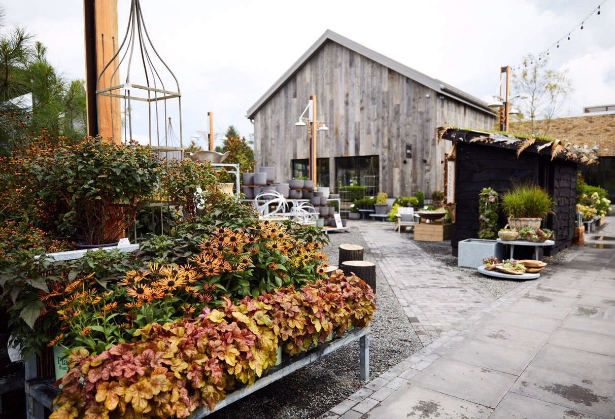 An autumn palette at Terrain's new outpost in Devon, PA. Photograph courtesy of Terrain, from Philadelphia Story: Terrain's New Shop on the Main Line.