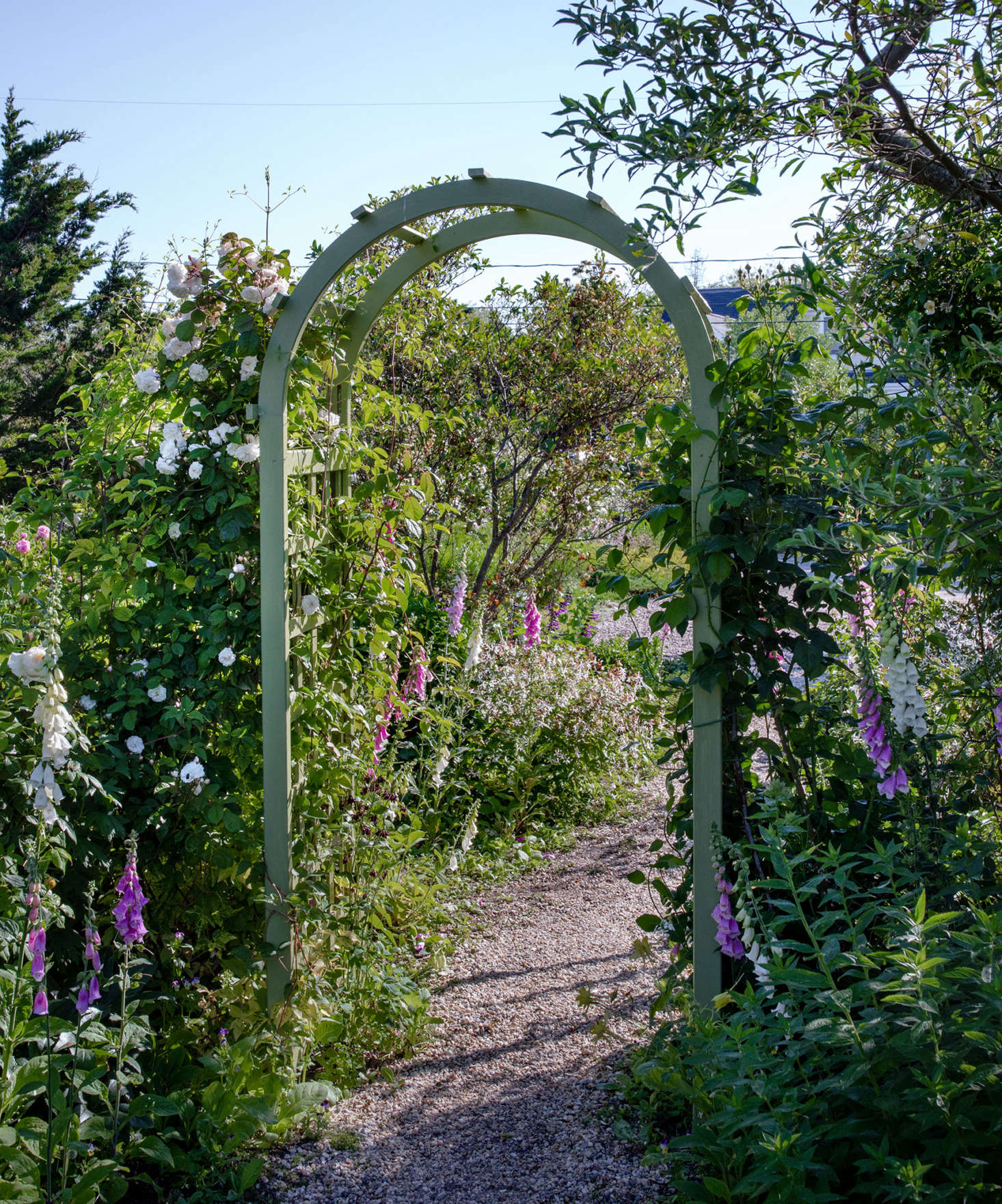 A rose-covered arch—painted in the same shade of green as the doors and trim on the cottages—forms a transition between the front gardens surrounding the driveway and the gardens around the main residence cottage.