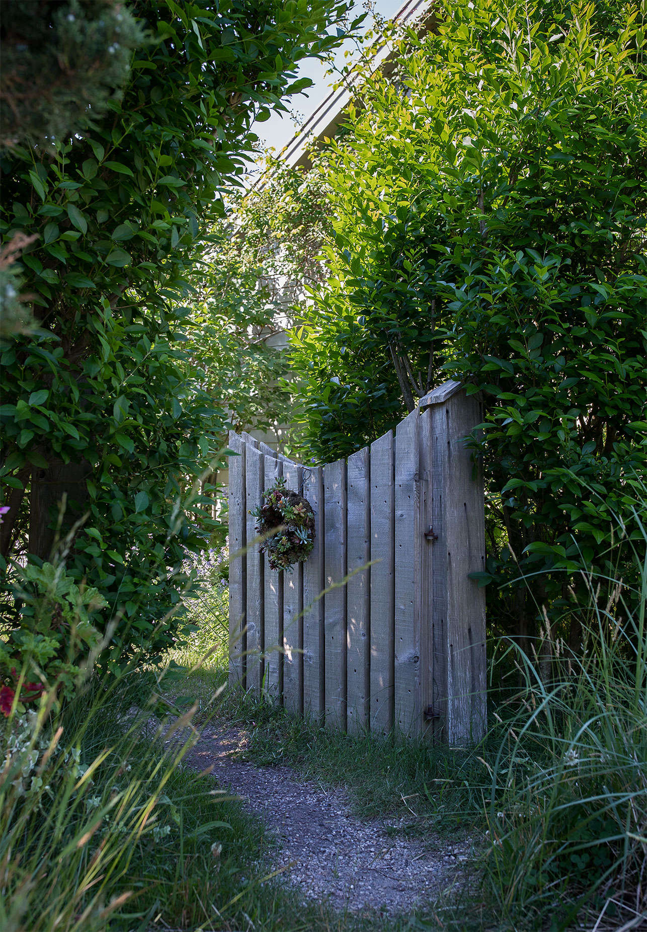 A large privet hedge and garden gate separate the main house from the guest cottage.