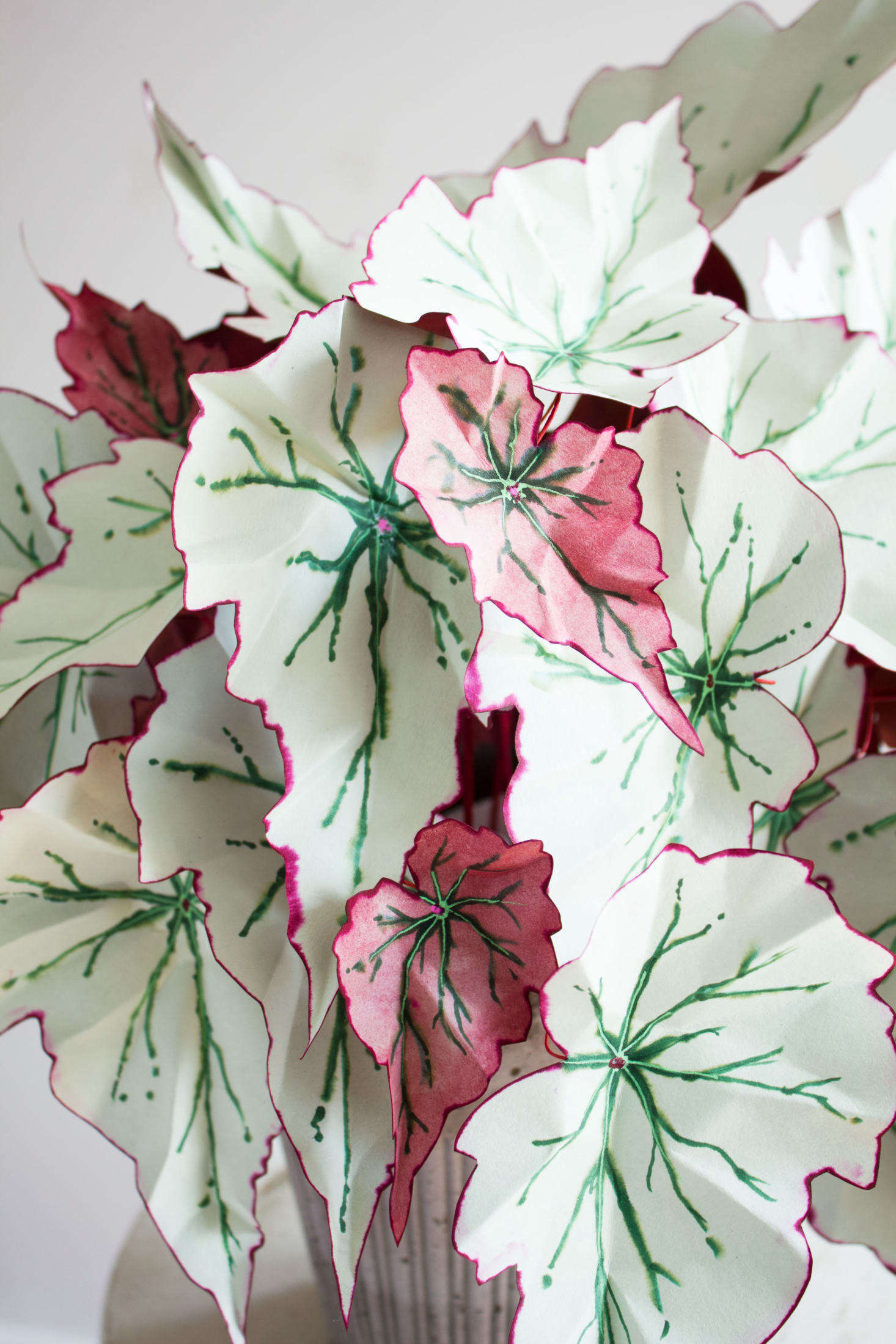 Paper Chase Artful Plant Sculptures By Corrie Beth Hogg For Grdn