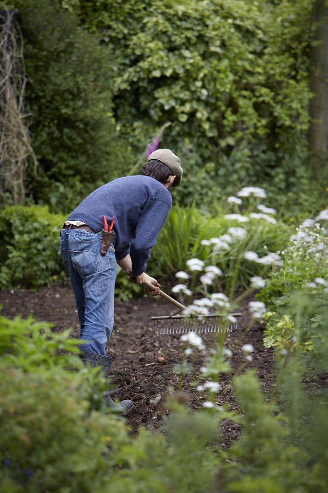Your First Garden: What You Need to Know About Topsoil