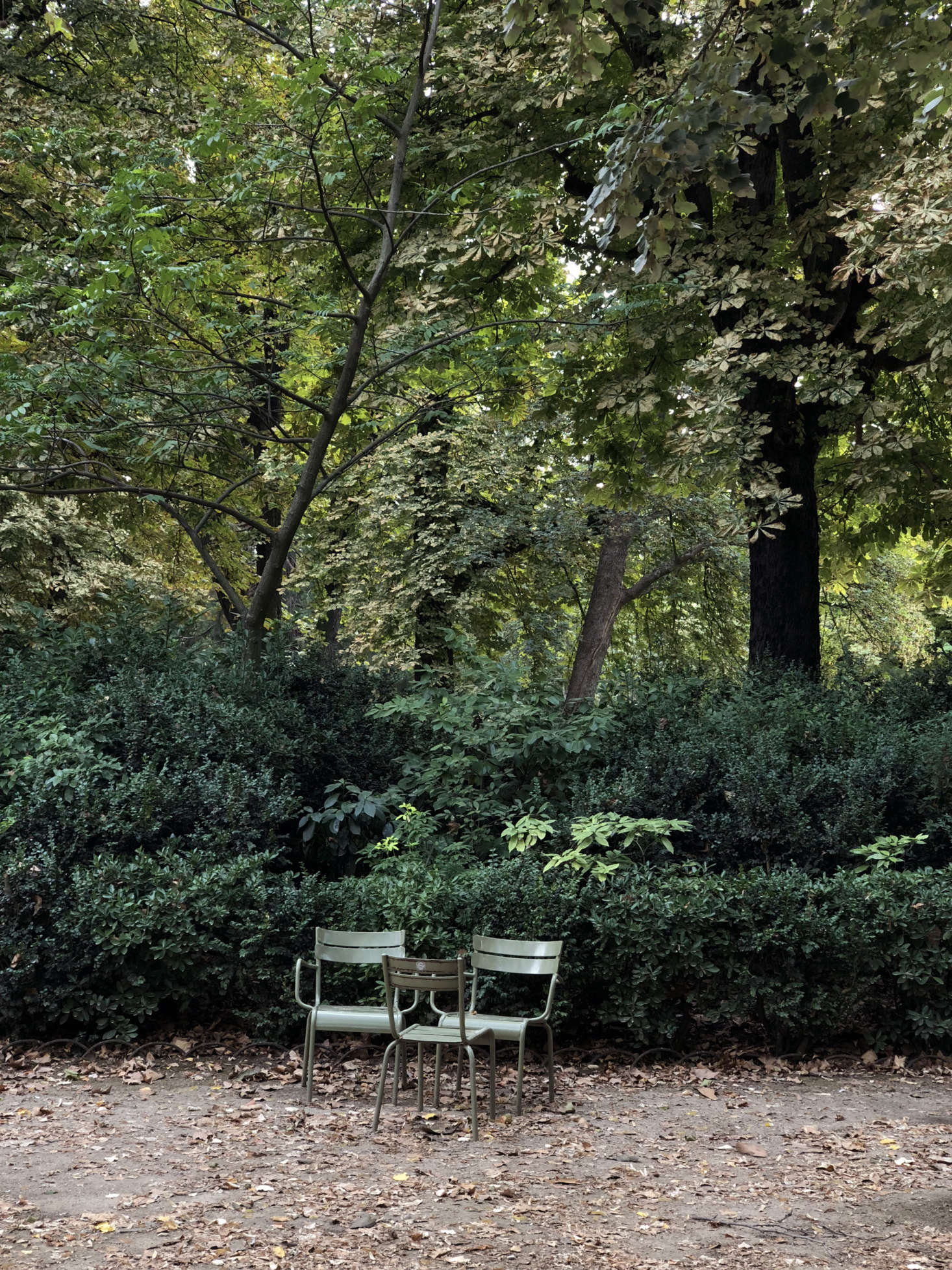10 Easy Pieces Sage Green Outdoor Chairs For The Parisian