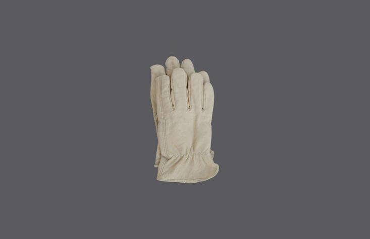 也许是个漂亮的朋友,但找到手套的方法。你最喜欢园丁