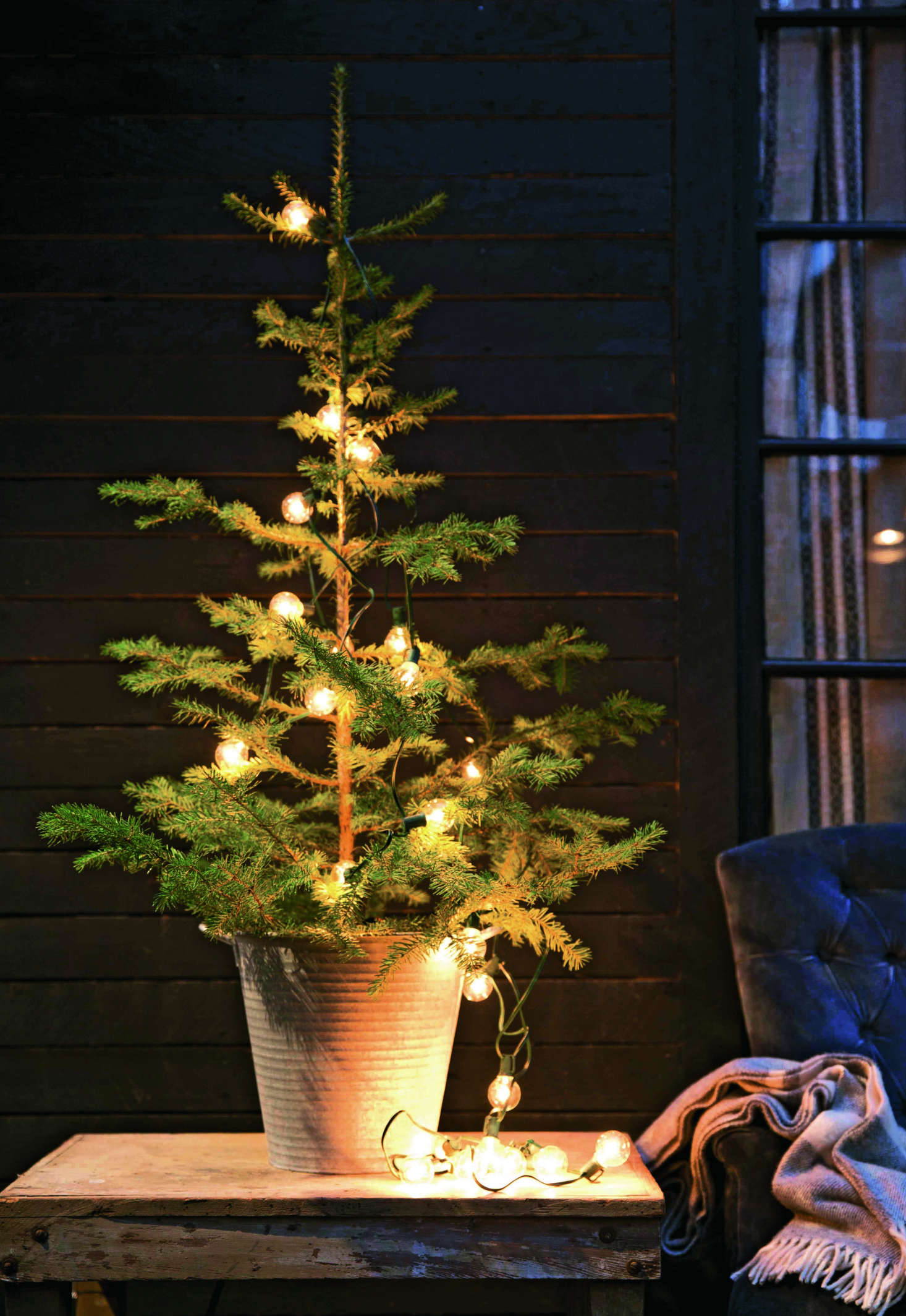 Winter Landscaping: 7 Holiday Décor Secrets to Steal from