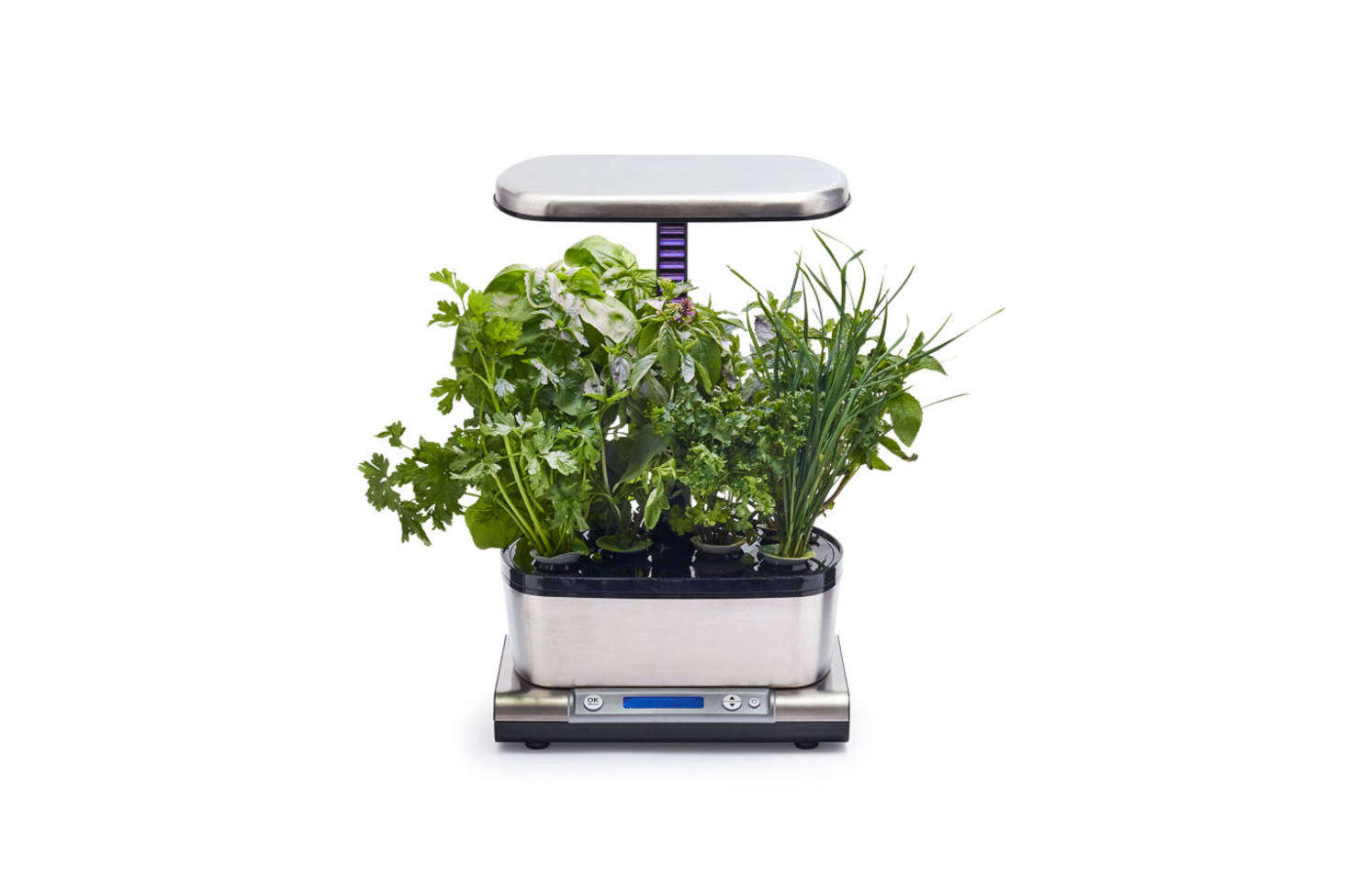 The AeroGarden Harvest Elite WiFi with a Gourmet Herbs Seeds Pod Kit is soil-free and works with high-performance LED lights for optimal growing (white light for rapid growth, blue for larger yields, and red for more flowers and fruit). The interactive LCD display guides you through the growing process via your own smart device. It&#8