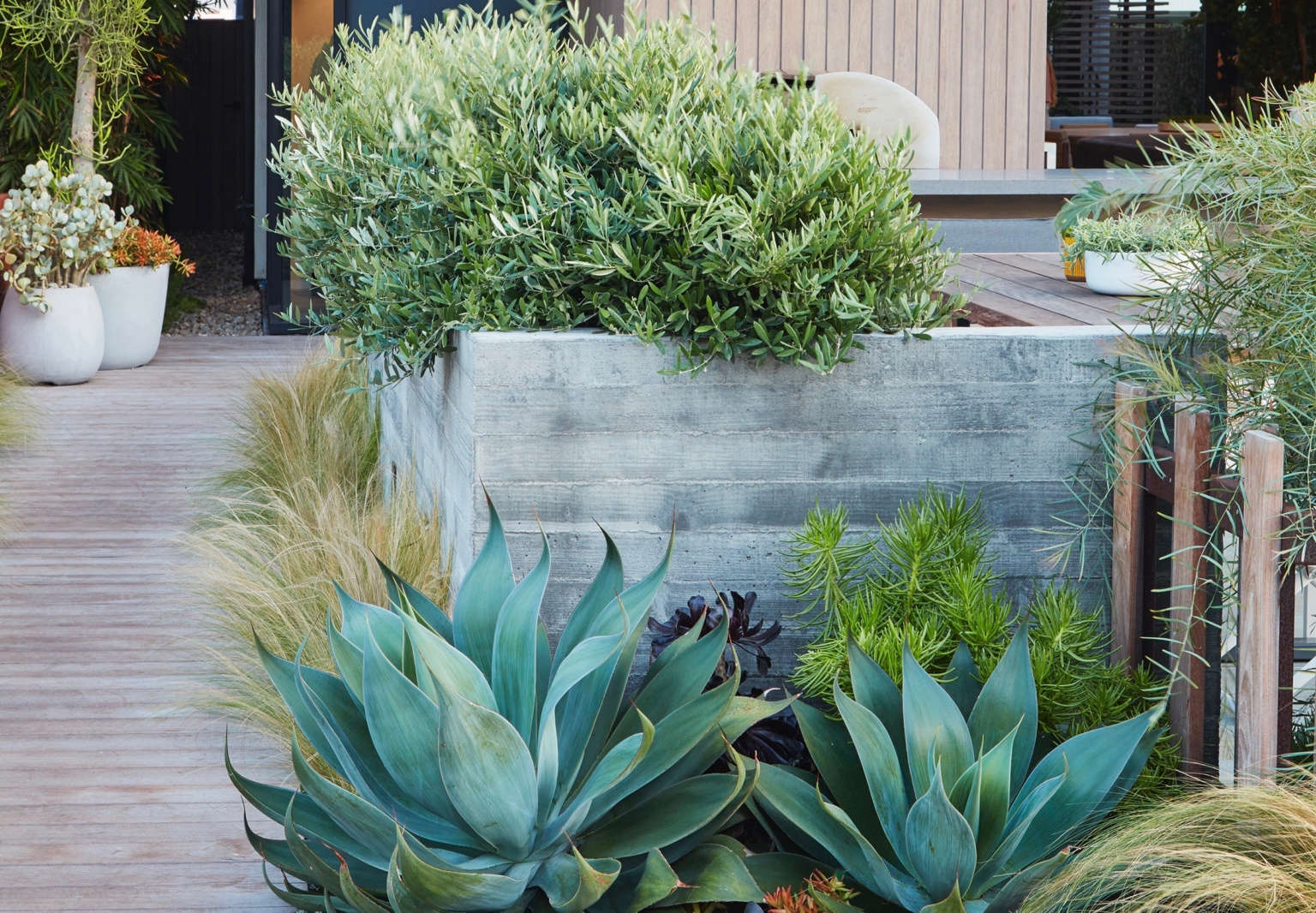 Low Water Landscapes 8 Ideas For Dry Gardens From Designer Daniel