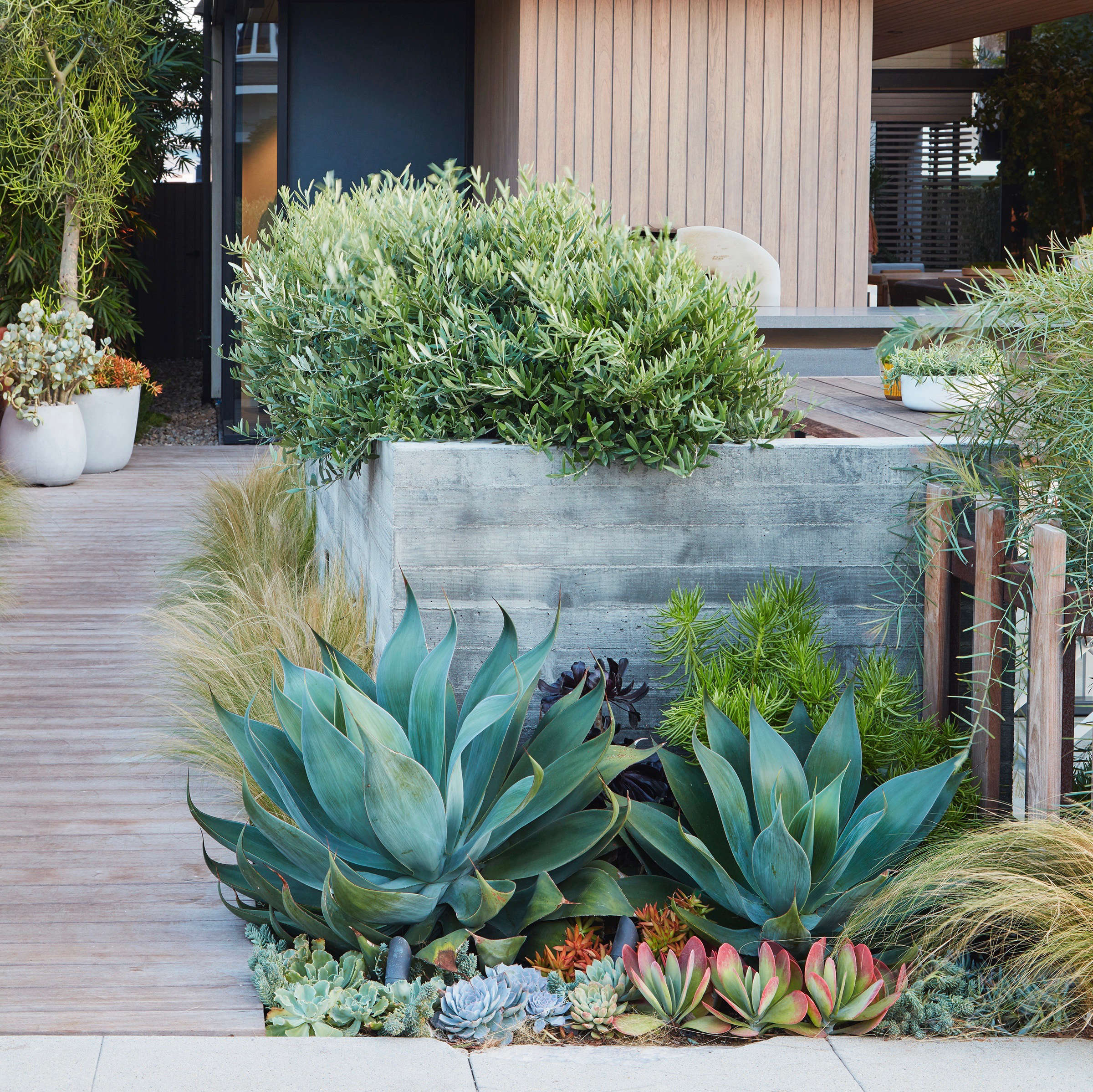 Low Water Landscapes 8 Ideas For Dry Gardens From